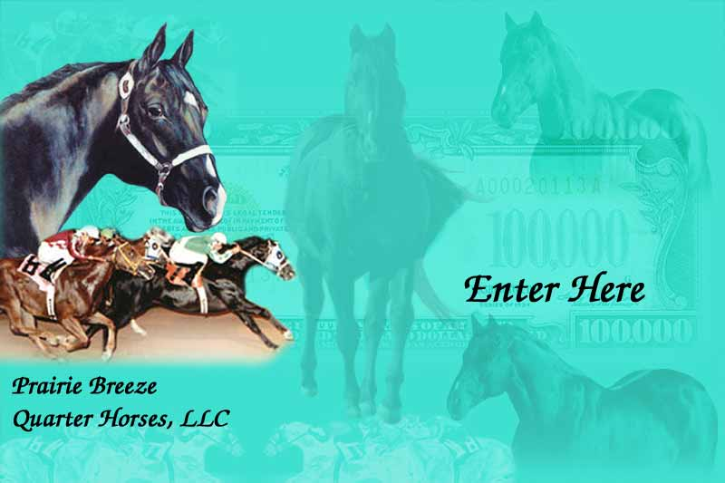 Welcome to Prairie Breeze Quarter Horses, LLC! Click to enter our site