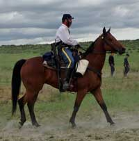 Pat Dailey and his 6 year old gelding, Americans Profit, aka Errol