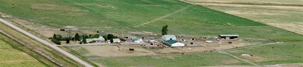arial view of Prairie Breeze QH Ranch Fairfield, Montana
